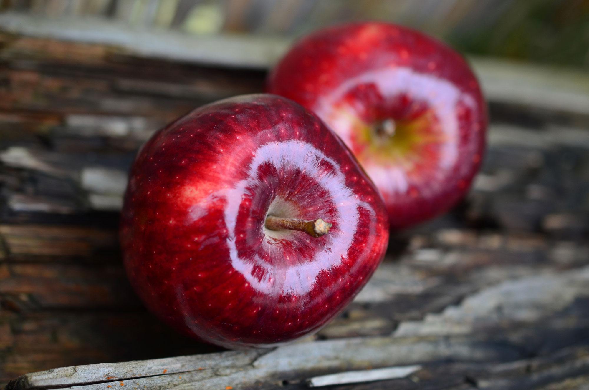 danielle-beauchamp-naturopathe-image-pommes-bois